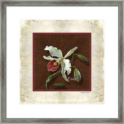 Old Masters Reimagined - Cattleya Orchid Framed Print by Audrey Jeanne Roberts
