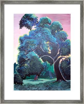 Old Oak Framed Print by Jenn Cunningham