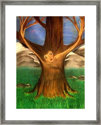 Old Oak Tree Framed Print by Misty VanPool