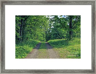 Old Road Through The Woods Framed Print by Edward Fielding
