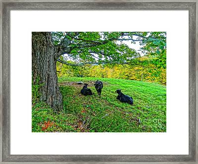 Old Time Country Framed Print by Jean Sproul