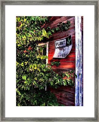 Old Williams Indiana Feed Mill Detail Framed Print by Julie Dant