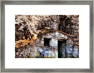 Old World Charm Framed Print by Janine Riley
