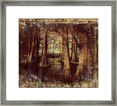 Old World Reelfoot Lake Framed Print by Julie Dant