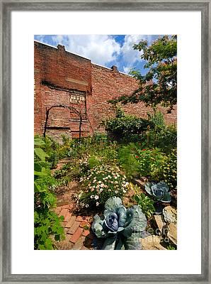 Olde Allegheny Community Gardens Pittsburgh Pennsvylvania Framed Print by Amy Cicconi