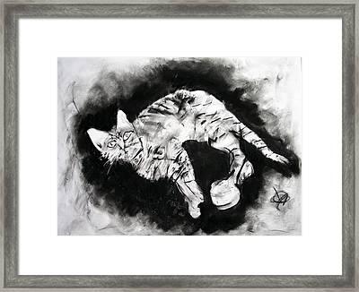Olive Framed Print by Brad Wilson