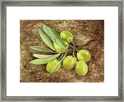 Olive Framed Print by Guido Borelli