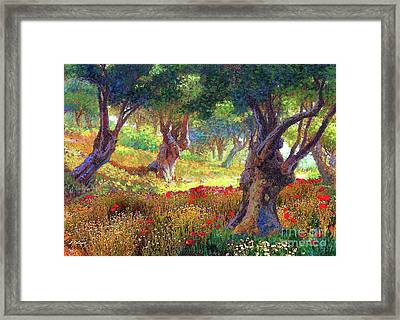 Olive Trees And Poppies, Tranquil Grove Framed Print by Jane Small
