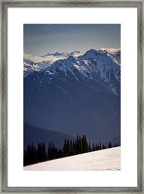 Olympic National Park Framed Print by Albert Seger