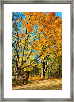 On A Country Road 5 - Paint Framed Print by Steve Harrington