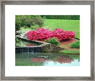 On A June Day Framed Print by Kathy Bucari