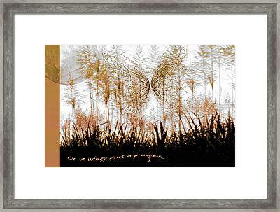 On A Wing And A Prayer Framed Print by Holly Kempe