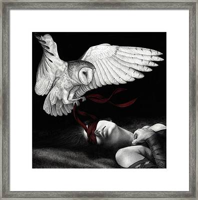 On Silent Wings Framed Print by Pat Erickson