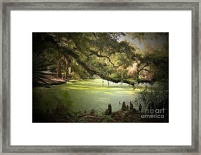 On Swamp's Edge Framed Print by Scott Pellegrin