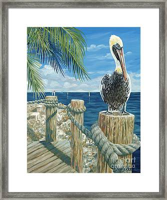 On The Lookout Framed Print by Danielle  Perry