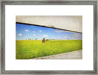 On The Other Side Framed Print by Darren Fisher