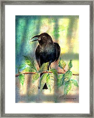 On The Outside Looking In Framed Print by Arline Wagner