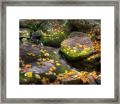 On The Rocks 2015 Framed Print by Bill Wakeley