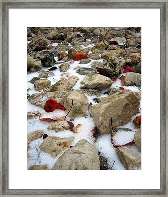 On The Rocks Framed Print by Lindsey Orlando
