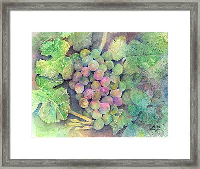 On The Vine Framed Print by Arline Wagner