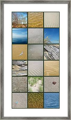 One Day At The Beach Ll Framed Print by Michelle Calkins