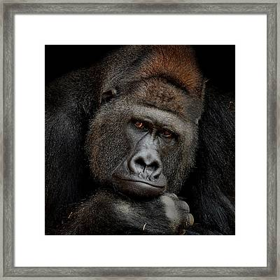 One Moment In Contact Framed Print by Antje Wenner