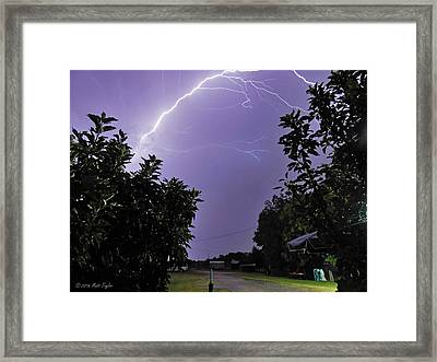 One Tree Zapping The Other Framed Print by Matt Taylor