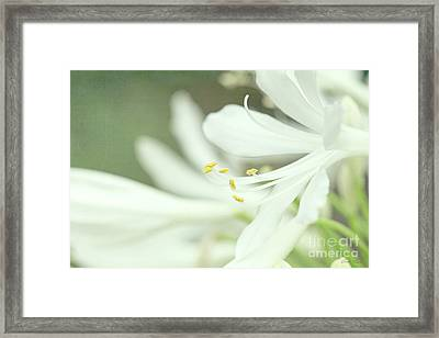 Only A Memory Framed Print by Linda Lees