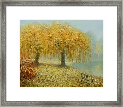 Only The Two Of Us Framed Print by Kiril Stanchev