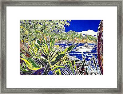 Onomea Framed Print by Fay Biegun - Printscapes