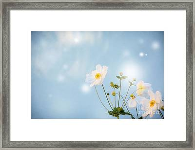 oo Magic oo Framed Print by SK Pfphotography