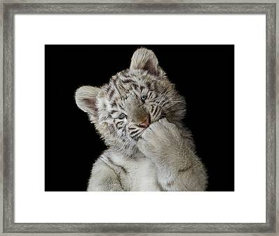 Oops! Did I Scare You? Framed Print by Pedro Jarque Krebs