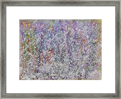Opalescent Framed Print by Don  Wright