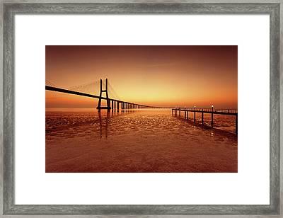 Orange Morning Framed Print by Jorge Maia
