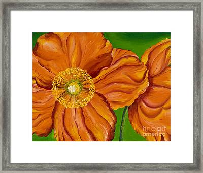 Orange Poppies Framed Print by Sweta Prasad