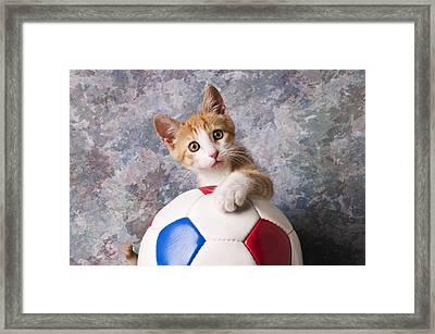 Orange Tabby Kitten With Soccer Ball Framed Print by Garry Gay
