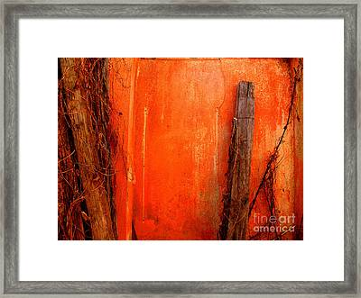 Orange Wall By Michael Fitzpatrick Framed Print by Mexicolors Art Photography