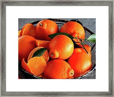 Oranges In Basket Framed Print by Marta Robin Gaughen