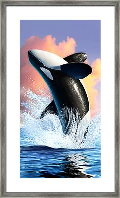 Orca 1 Framed Print by Jerry LoFaro