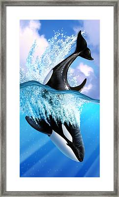 Orca 2 Framed Print by Jerry LoFaro