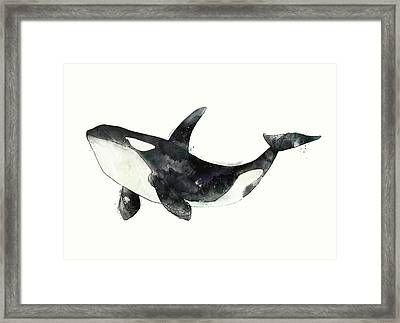 Orca From Arctic And Antarctic Chart Framed Print by Amy Hamilton
