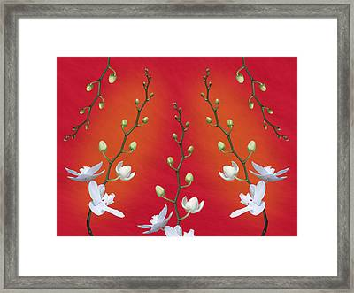 Orchid Ensemble Framed Print by Tom Mc Nemar
