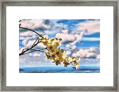Orchid Flowers Framed Print by Alexandre Ivanov