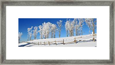 Ore Knob In Snow Panorama Framed Print by Alan Lenk