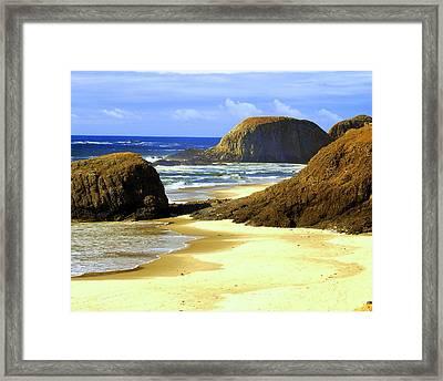 Oregon Coast 18 Framed Print by Marty Koch