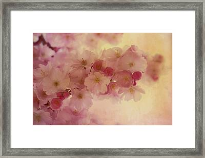 Oriental Romantic Blossoms Framed Print by Georgiana Romanovna