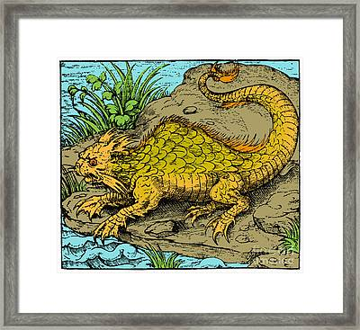 Orobon, Monster Fish, 16th Century Framed Print by Science Source