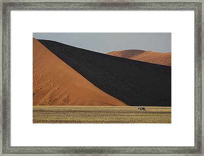 Oryx And Dunes Framed Print by Christian Heeb