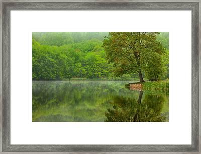 Osbornedale Green Framed Print by Karol Livote
