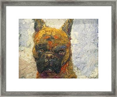Oscar The Boxer Framed Print by Karla Kriss